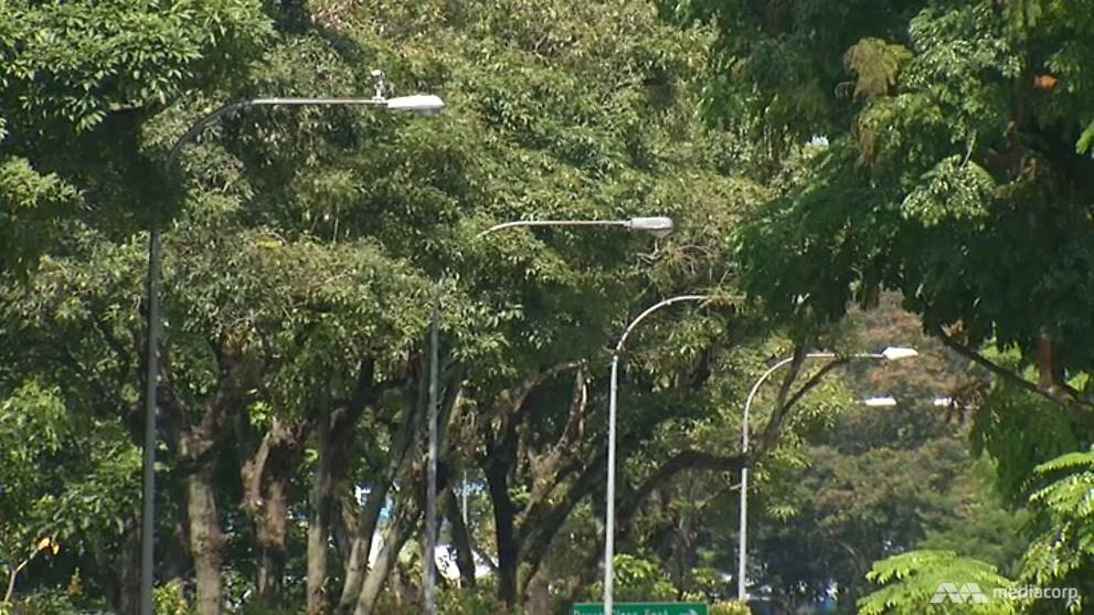 'Smart lamp posts' in Singapore won't shine light into people's lives