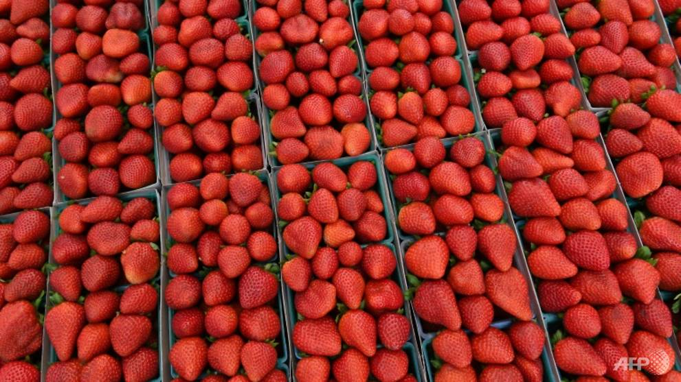 NTUC FairPrice halts all strawberry imports from Australia | Video