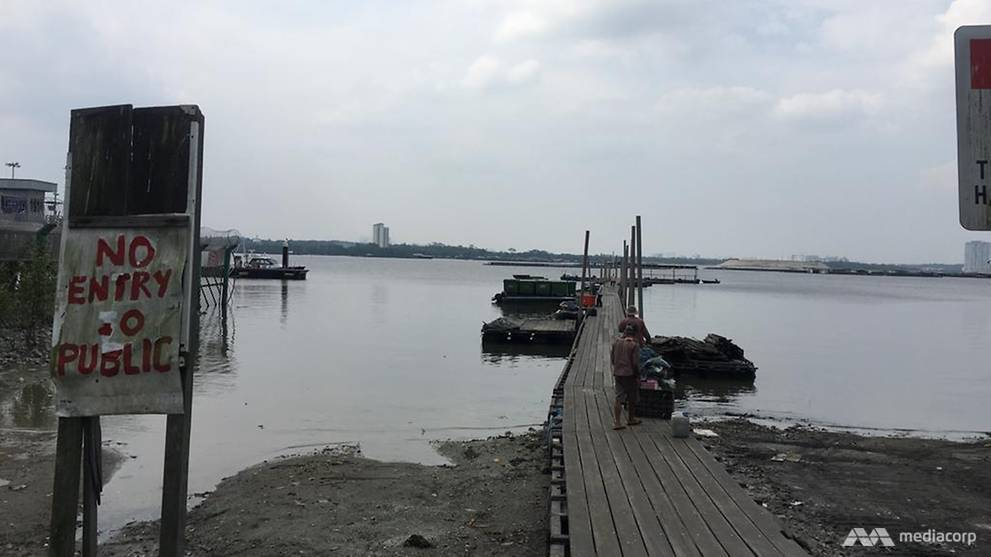 New S$6 million jetty for Lim Chu Kang fish farmers by 2020 - CNA
