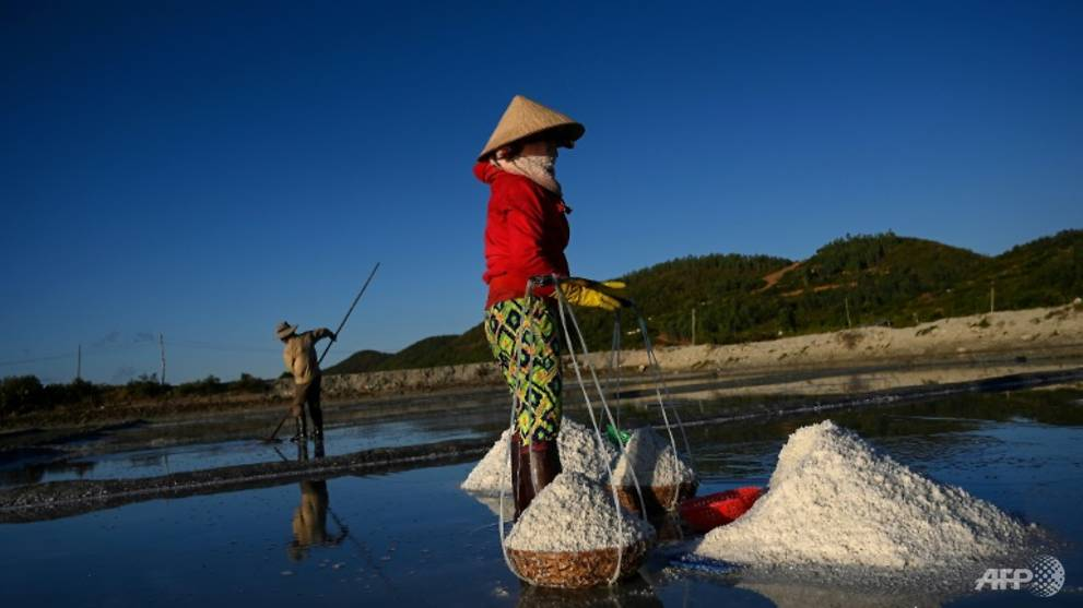 Mineral misery: Vietnam salt farmers battered by imports, climate