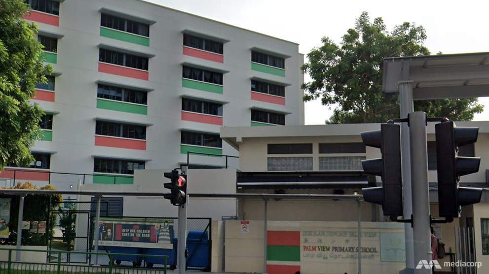 Palm View Primary School student tests positive for COVID-19, home-based learning extended