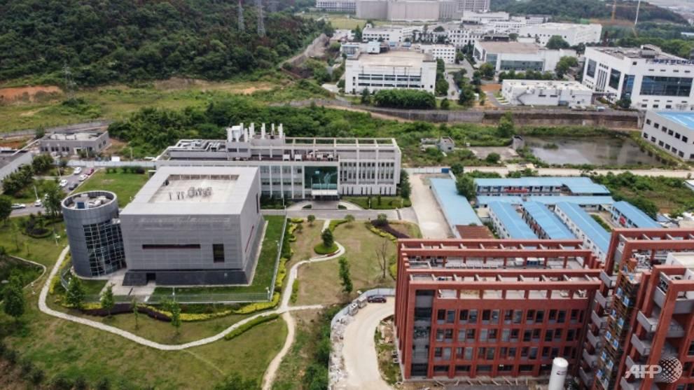 Wuhan lab had three live bat coronaviruses: Chinese state media
