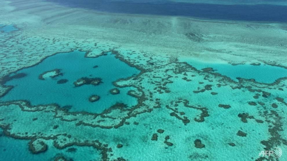 Status Warisan Dunia Great Barrier Reef terancam