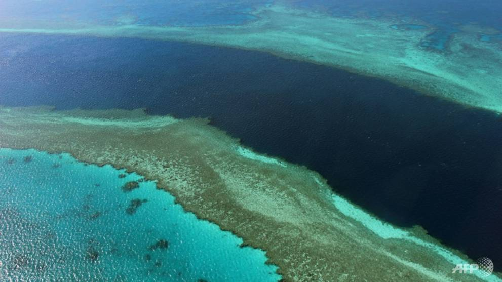 Australia menunggu keputusan warisan dunia Great Barrier Reef
