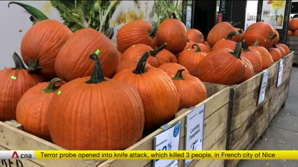 US revels in pumpkin spice season | Video