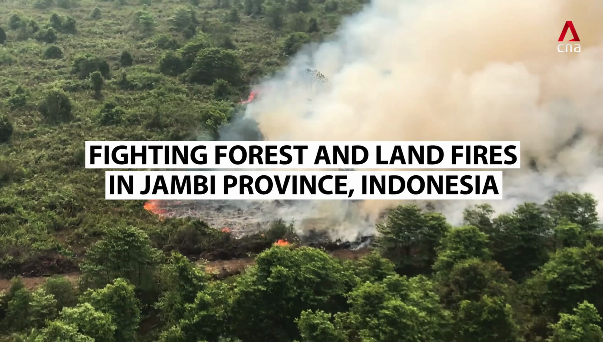 Fighting haze-causing forest fires in Indonesia's Jambi province | Video