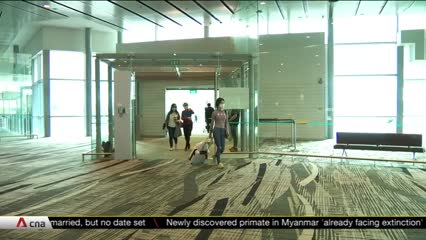 Some flights sold out, online searches for hotels surge after Singapore-Hong Kong air travel bubble announcement | Video