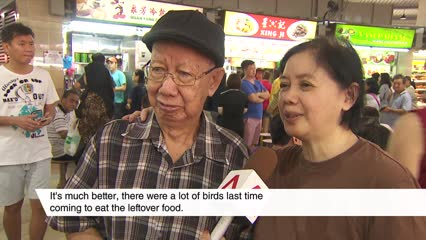 1,000 durians given away to celebrate Tampines Round Market reopening   Video