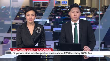 Singapore targets to halve peak emissions by 2050, achieve net zero emissions 'as soon as viable' in second half of century   Video