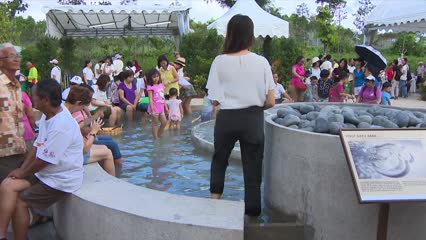 Sembawang Hot Spring Park reopens with cascading pool, cafe and floral walk   Video