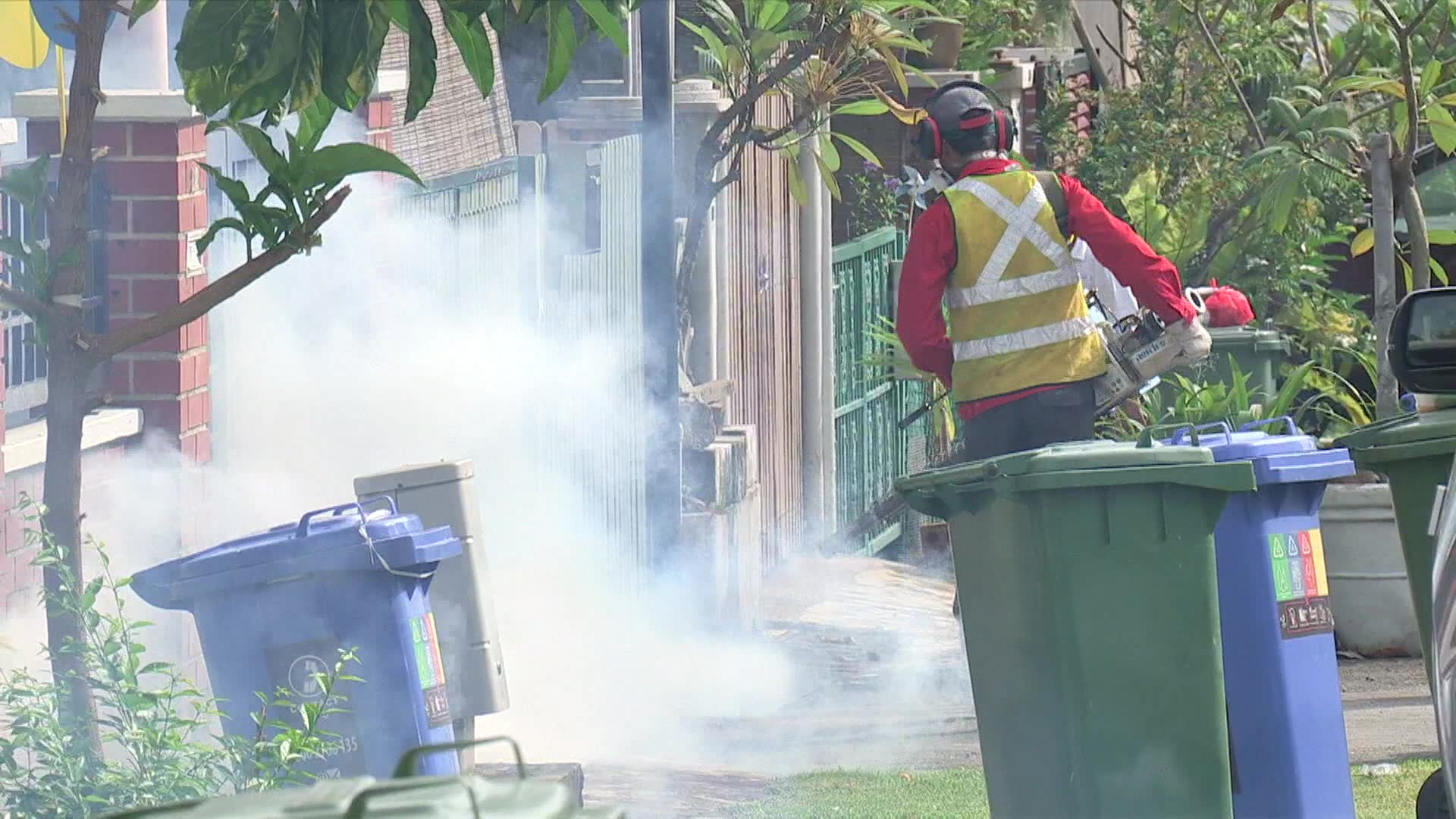 Weekly reported dengue cases in Singapore spike to highest in more than 3 years | Video