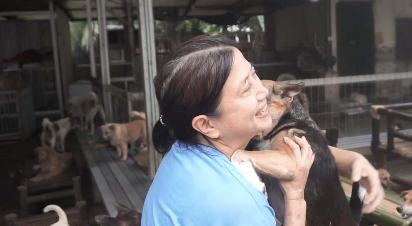 This Indonesian woman has rescued more than 1,000 stray and abandoned dogs