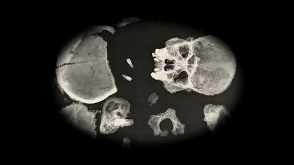Bones And Bullets