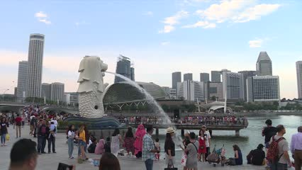 Singapore tourism to take 'significant hit' in 2020 due to coronavirus, up to 30% fewer visitors expected | Video