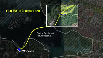 Environmentalists worried, but residents relieved over Cross Island Line direct route | Video