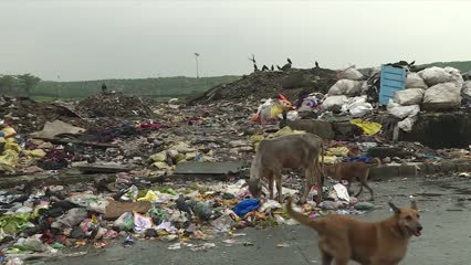 India plans to ban or phase out use of plastics | Video