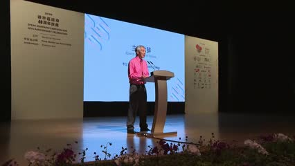 Speak Mandarin Campaign has made 'significant' contributions, but Singapore losing bilingual edge: PM Lee