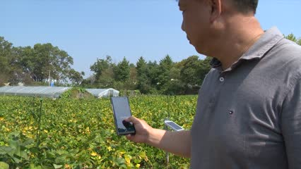 South Korea's Daesong Freedom Village transformed by 5G | Video