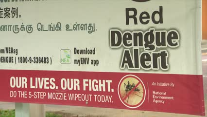 Largest dengue cluster in Woodlands closes | Video