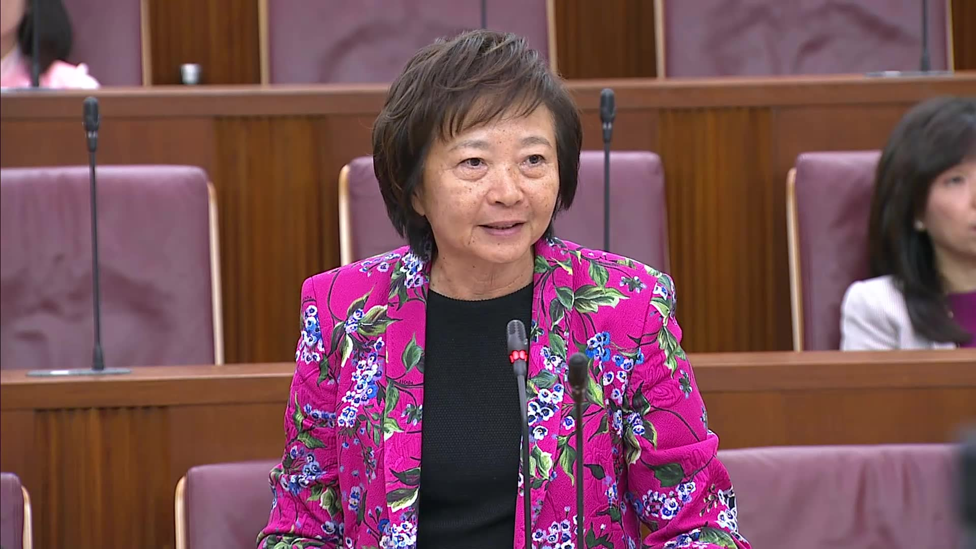 Budget 2020 Debate: Lee Bee Wah on climate change action, Singapore core workforce