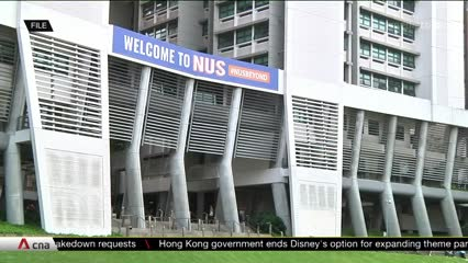 Proposed NUS College of Humanities and Sciences could improve job prospects for students | Video