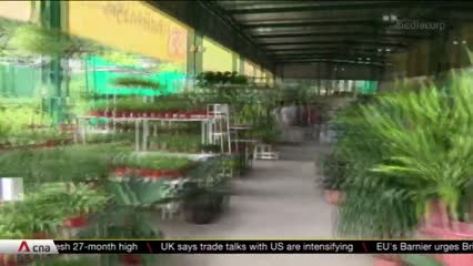 Homegrown retailers turn to modern technology amid COVID-19 pandemic | Video
