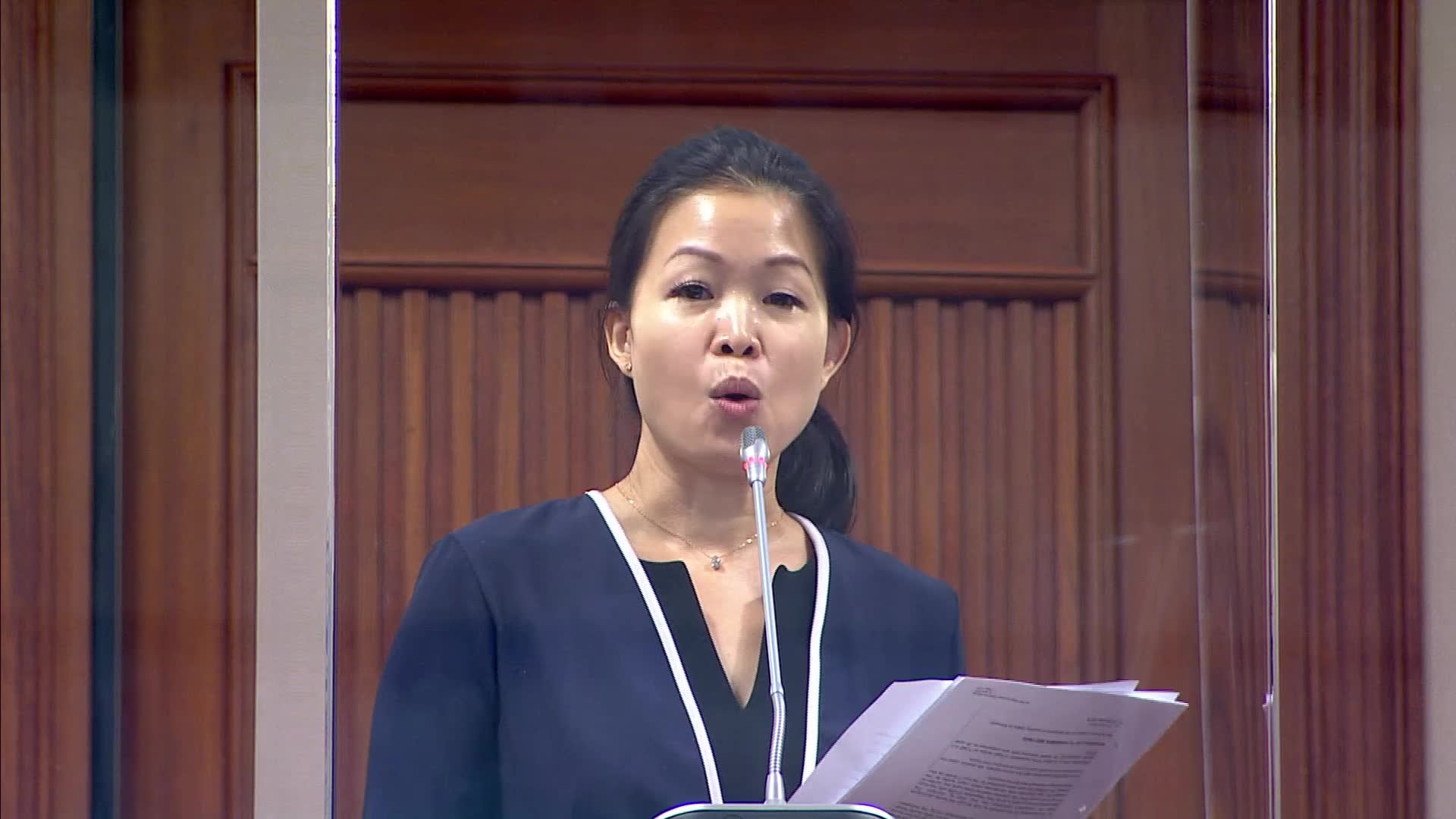 Cheng Li Hui on Fortitude Budget