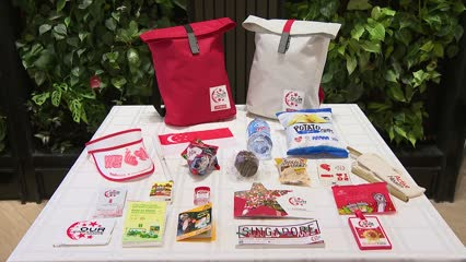 NDP 2019 funpack to feature reusable items in nod to sustainability | Video