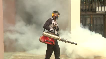 Pest control firms see higher demand amid spike in dengue cases| Video