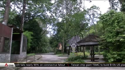 COVID-19: Malaysia's zoo struggles to stay afloat as revenue dries up due to movement control order | Video