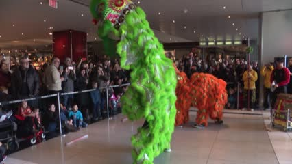 Lion dancing for everyone in New York during Chinese New Year | Video