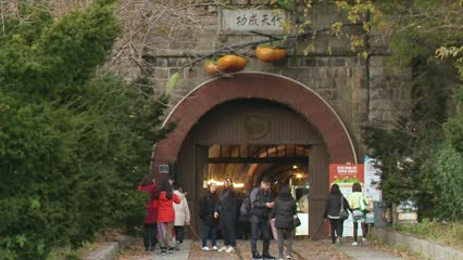 New use for abandoned train tunnel as persimmon wine cellar | Video
