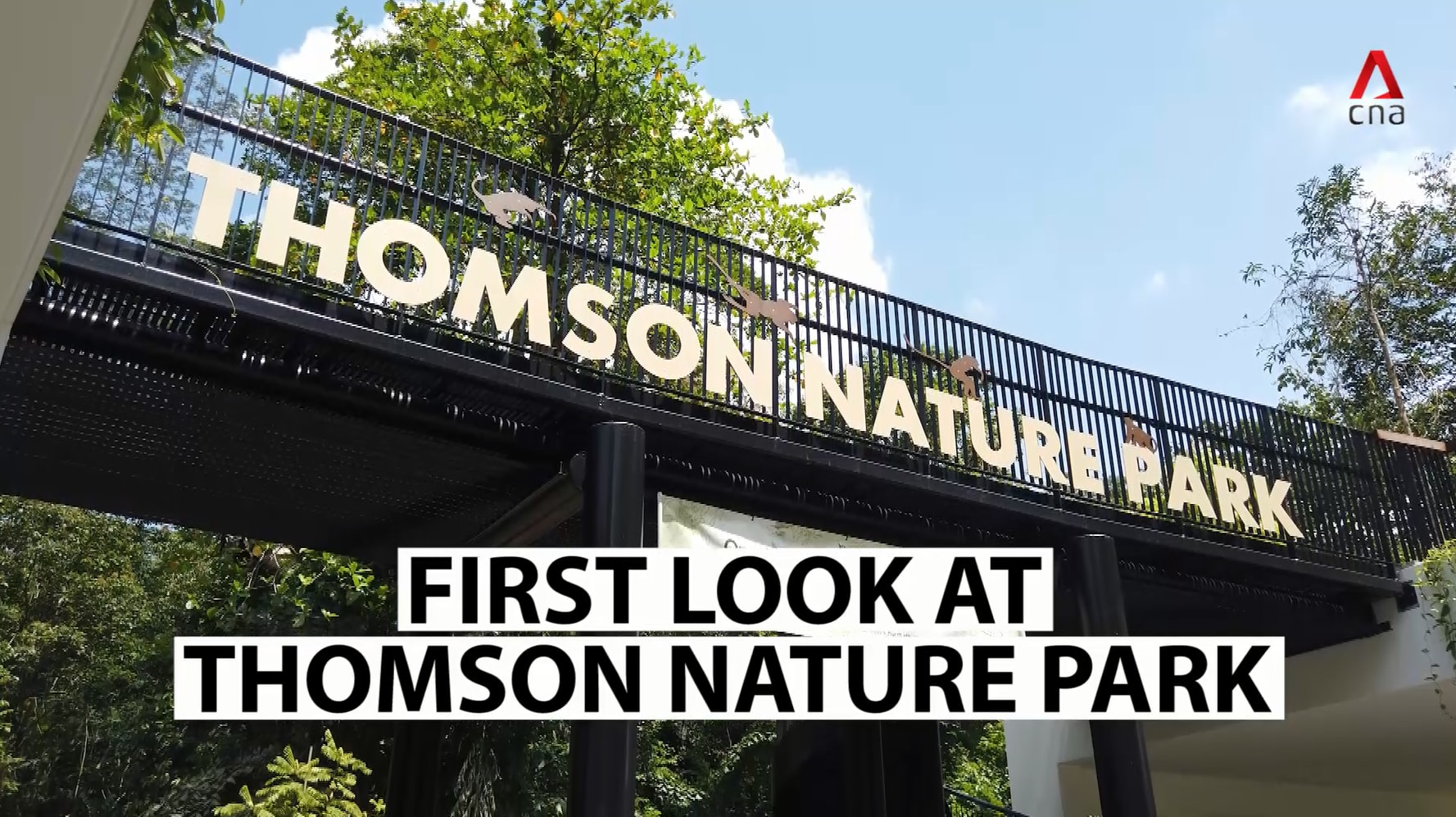 First look at Thomson Nature Park - and the ruins of an old Singapore kampung
